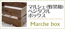 野菜箱・マルシェボックス